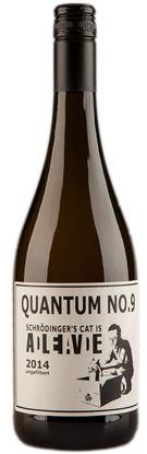 Florian Schuhmann - Quantum No.9 - Schroedinger´s Cat